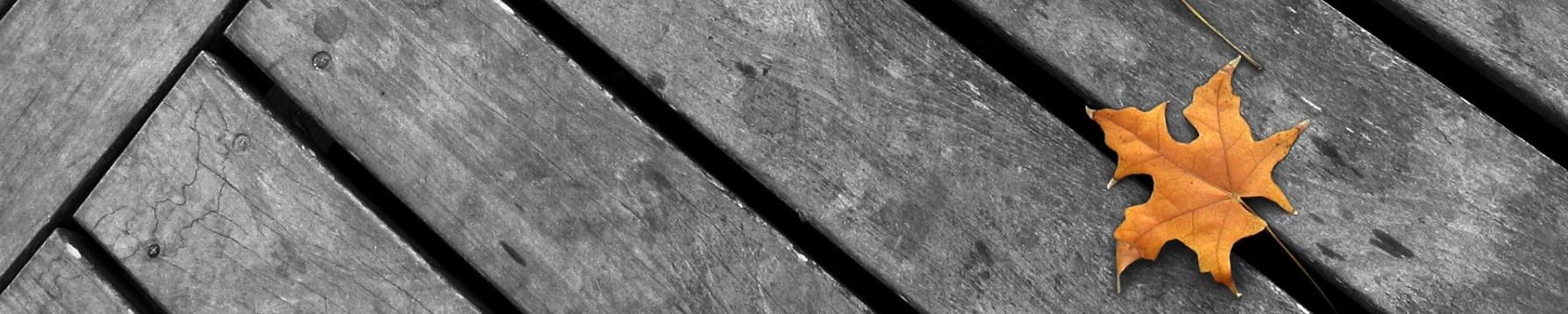 minimalizm-serye-doski-osen_1793x359